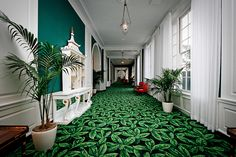 greenbrier resort - Google Search