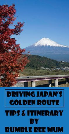 Driving the Golden Route in Japan brought us to some of the most stunning views of Mount Fuji! - Bumble Bee Mum http://bumblebeemum.net/2016/01/19/japan-self-drive-itinerary-golden-route-tokyo-kyoto-osaka/