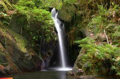 Waterfall on the Tiger Ferns Trail, Cockscomb Basin Wildlife Sanctuary