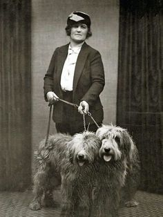 Vintage photo, woman with two sheep dogs