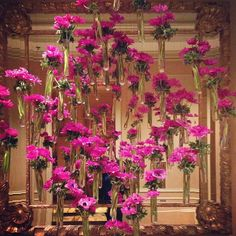 Raining flowers at @Four Seasons Hotel Los Angeles at Beverly Hills <---they have the best floral displays!!!