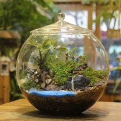 Rodada com tampa terrário bonito potes de vidro de ar planta vaso de flores 20 cm vasos casamento decoração golpe terrário vaso redondo