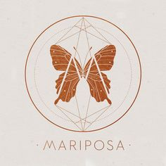 Mariposa Logo for Lou Madhu's Butterfly Taxidermy