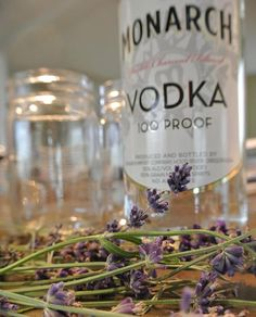 How to Make a Lavender Herbal Tincture  www.GirlGab.com
