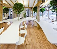 Interior OpenAD's Office Greenhouse