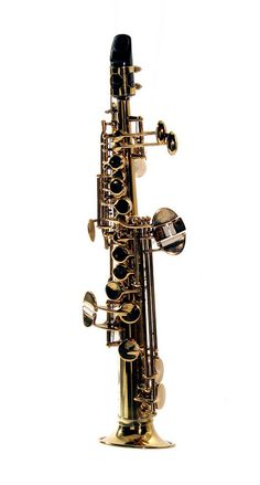 The soprillo saxophone is about as tiny as a saxophone can get. Higher than even the tiny sopranino, it takes considerable skill to get the rare soprillo saxophone to make a sound. Saxophone Notes, Soprano Saxophone, Homemade Instruments, French Horn, Oboe, Music Stuff, Musical Instruments, Piano Teaching, Music Wall