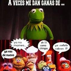 rené memes11