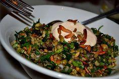 Cypriot grain salad - freekah,coriander,almonds,lentils,yoghurt