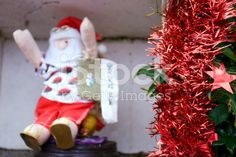 The focus is on the Tinsel at the front of the image. Kiwiana, Turquoise Water, Christmas Background, Christmas Photos, Image Now, Festive, Royalty Free Stock Photos, Holiday Decor, Photography