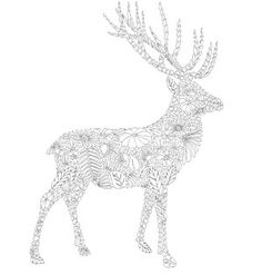 Animal Kingdom Coloring Book Pages