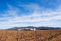Vinos mexicanos y vinicolas de Mexico: A descubrir la zona vinicola de Sonora