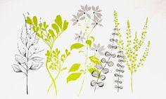 fresh and modern botanical print