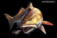 sg_redfish_tommykinnerup_2014_02 (1).jpg