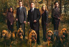 AXN estrena la última temporada de Sin rastro en diciembre | Series Adictos