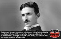 Nikola Tesla Once Set Fire to a Bunch of Butterflies - http://www.factfiend.com/nikola-tesla-set-fire-bunch-butterflies/