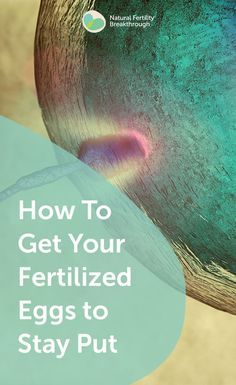 How to Get your Fertilized Eggs to Stay Put. Read our answer on our Fertility FA. How to Get your Fertility Yoga, Fertility Foods, Natural Fertility, Ivf Timeline, Ivf Twins, Frozen Embryo Transfer, Ivf Cycle, Health Products, Health And Wellness