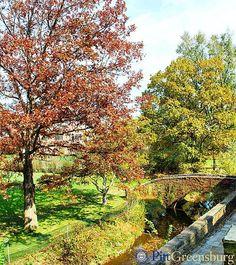 Fall at Pitt-Greensburg  #Autumn #Pennsylvania #Pitt #H2P #campus
