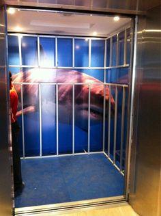 Shark Cage Elevator