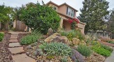 Life After Lawn Advice: Plant for Year-round Color | UC Davis Arboretum & Public Garden