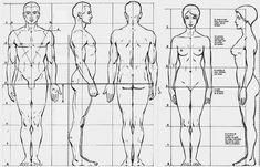 Todos los días paso por delante de un centro de estética y desde hace un par de semanas un cartel estratégicamente colocado en un ventanal, hace que se me vayan los ojos. Es uno de esos anuncios de… Drawing Body Proportions, Human Body Drawing, Human Anatomy Drawing, Human Figure Drawing, Figure Sketching, Anatomy Art, Human Art, Hand Drawing Reference, Body Reference