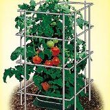 Durable, foldable galvanized wire tomato cages 14 1/2 inches wide x 39 inches tall. 6 inch spikes. Fold flat for easy storage. Cages can be stacked for growing indeterminate varieties. Single cages provide adequate support for bush-type and patio variety tomato plants. Gray.  Set of 3 #Tomato cages & supports  $76.99