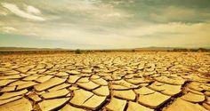 WikiLeaks desvela la fecha en la que se podría terminar el agua potable de la Tierra.