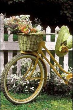 Bike & Basket garden..**