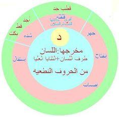 Coran Tajwid, Learn Arabic Online, Allah Wallpaper, Islam Facts, Learning Arabic, Quran, Life Quotes, Language, Teacher
