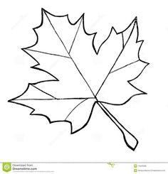 Resultado de imagem para risco de folha símbolo do Canada