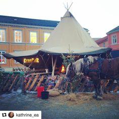 En hest på pubrunde . #reiseblogger #reiseliv #reisetips  #Repost @kathrine_ea with @repostapp  Granbar - baren midt på Torvet i Trondheim   #granbar #granbarpub #julemarked  #photoftoday #nofilter #igdaily #ignorway #ignature #vg #vibrantnorway #mittnorge  #bestofnorway #iamnordic #dreamchasersnorway #unlimitedscandinavia #igscandinavia #wannagohere #visitnorway