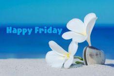 Good Morning Friday, Good Morning Photos, Friday Weekend, Good Morning Good Night, Morning Pictures, Good Friday, Happy Weekend, Happy Day, Weekend Quotes