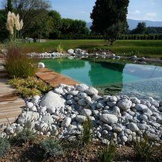 La piscine contemporaine de BioNova