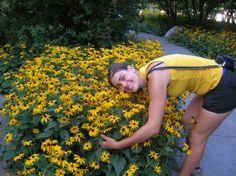 How to Grow:Black-eyed Susan- garden black-eyed Susan- grow rudbeckia