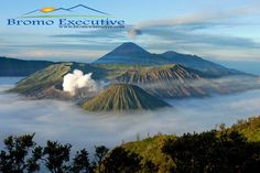 Bromo Tour Package from www.bromoexecutive.com is an online service provider in the field of Tour and travel Domestic and International.