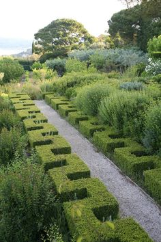 Love this topiary contrasting against the natural along this path Modern Landscaping, Backyard Landscaping, Topiary Garden, Traditional Landscape, Formal Gardens, Garden Cottage, Garden Spaces, Dream Garden, Hedges