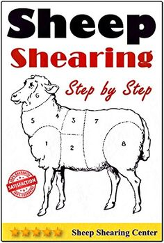 Sheep Shearing: How to shear a sheep step by step with no step skipped - Kindle edition by Sheep Shearing Center. Professional & Technical Kindle eBooks @ Amazon.com.