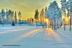 Wonderful sunsets, freezing winters, beautiful summers, lakes and saunas! (Vuokatti, Finland)
