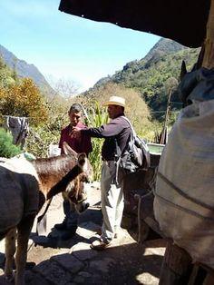 Predicación en la Sierra de Tlahuiltepa Estado de Hidalgo México. Campaña de predicación