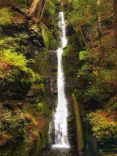 Silverthread Falls is a waterfall in the state of Pennsylvania, USA with a breathtaking view. This waterfall with a vertical drop of 24.3 meters is located in Dingmans Ferry in Delaware Township, Pike County. Dingman Falls is another stunning falls situated near Silverthread Falls.