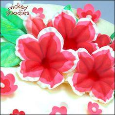 Cake Decorating with Modeling Chocolate