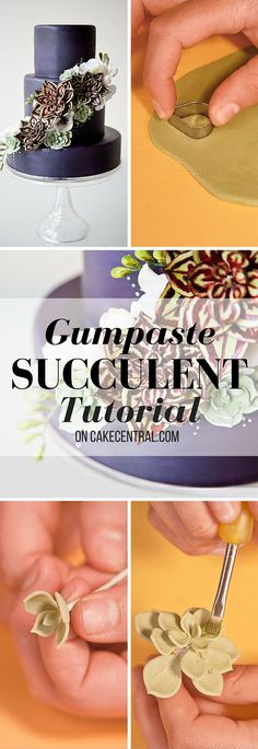 As seen in Cake Central Magazine Volume 1 Issue 6 Succulents also known as fat plants are waterretaining plants known for their plump Fondant Figures, Fondant Cakes, Cupcake Cakes, Car Cakes, Cake Fondant, Fondant Flowers, Sugar Flowers, Garden Cakes, Gum Paste Flowers