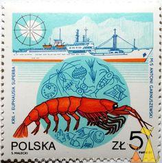 Antarctic krill, Polska, Poland, stamp, fishing, Euphausia superba, shellfish, Antarctic krill, Krill, S. MaleckiI, PWPW, 87, MS Antoni Garnuszewski, 5 Zl