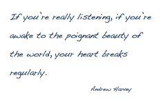 Andrew Harvey