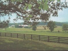Archived Land near Paved Road, Social Circle, Georgia, 30025 ...