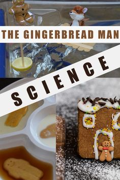 Gingerbread Man Science Experiments for Kids - soak gingerbread men in different liquids, build boats, bake with different ingredients and lots Science Crafts, Easy Science Experiments, Science For Kids, Science Activities, Gingerbread Man Crafts, Gingerbread Man Activities, Stem Challenges, Baby Sensory, Stem Projects