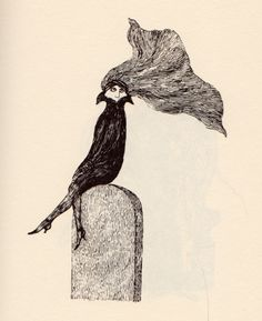 | illustratedladies: Edward Gorey