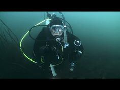 What's the Difference Between PADI Master Scuba Diver and Divemaster?