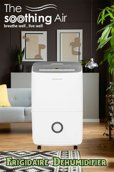 30 pint dehumidifier, best 30 pint dehumidifier, dehumidifier 30 pint, best 30 pint dehumidifier 2018, best 30 pint dehumidifier 2019, 30 pt dehumidifier, 30 pint dehumidifiers, 30 pint dehumidifier reviews, 30-pint dehumidifier, best 30 pt dehumidifier, best cheap dehumidifier, best dehumidifier 30 pint, dehumidifier cheap, best 30 pint dehumidifiers, Dehumidifiers, Buyers Guide, Get One, Home Appliances, House Appliances, Kitchen Appliances, Appliances