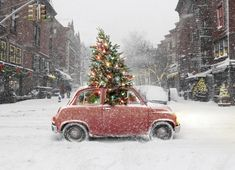 20фотографий отом, что Новый год— самый душевный праздник вмире