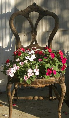 Turn old chairs into beautiful flower beds and planters. Would love an old chair on the deck to put a potted plant on. Garden Chairs, Garden Planters, Planters Flowers, Flowers Garden, Ideas For Planters, Impatiens Flowers, Container Flowers, Chair Planter, Pot Jardin